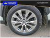 2019 Toyota RAV4 Limited (Stk: 21155A) in Dawson Creek - Image 6 of 25