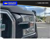 2016 Ford F-150 XLT (Stk: 21T109A) in Quesnel - Image 8 of 23
