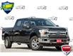 2019 Ford F-150 XLT (Stk: D98770A) in Kitchener - Image 1 of 16