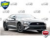 2019 Ford Mustang GT Premium (Stk: 154750) in Kitchener - Image 1 of 19