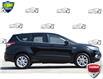 2017 Ford Escape SE (Stk: 20E6580AX) in Kitchener - Image 2 of 22