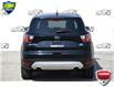 2017 Ford Escape SE (Stk: 20E6580AX) in Kitchener - Image 4 of 22