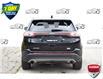 2017 Ford Edge SEL (Stk: 156660) in Kitchener - Image 4 of 20