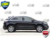 2017 Ford Edge SEL (Stk: 156660) in Kitchener - Image 2 of 20