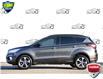 2017 Ford Escape SE (Stk: 156450) in Kitchener - Image 3 of 24