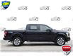 2018 Ford F-150 XL (Stk: 156880) in Kitchener - Image 2 of 23