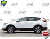 2019 Honda CR-V EX-L (Stk: 156940) in Kitchener - Image 3 of 22