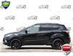 2017 Ford Escape SE (Stk: 156680) in Kitchener - Image 3 of 22