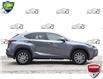 2020 Lexus NX 300 Base (Stk: 157360) in Kitchener - Image 2 of 19