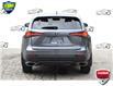 2020 Lexus NX 300 Base (Stk: 157360) in Kitchener - Image 4 of 19