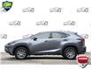 2020 Lexus NX 300 Base (Stk: 157360) in Kitchener - Image 3 of 19