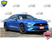 2019 Ford Mustang EcoBoost Blue