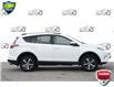 2018 Toyota RAV4 LE (Stk: 156800X) in Kitchener - Image 6 of 20
