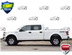 2020 Ford F-150 XLT (Stk: 157430X) in Kitchener - Image 2 of 19