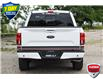 2019 Ford F-150 Lariat (Stk: 21F2680A) in Kitchener - Image 4 of 24
