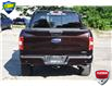 2019 Ford F-150 XLT (Stk: 21F3300A) in Kitchener - Image 5 of 23
