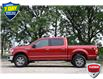 2020 Ford F-150 XLT (Stk: 157920A) in Kitchener - Image 4 of 22