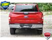 2020 Ford F-150 XLT (Stk: 157920A) in Kitchener - Image 5 of 22