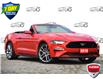 2018 Ford Mustang GT Premium (Stk: 158420) in Kitchener - Image 1 of 18