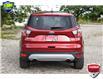 2017 Ford Escape SE (Stk: 21E5000A) in Kitchener - Image 4 of 19