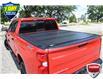 2019 Chevrolet Silverado 1500 LT Trail Boss (Stk: 61090A) in Kitchener - Image 6 of 23