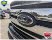 2019 Ford F-150 XLT (Stk: W0323A) in Barrie - Image 9 of 24