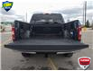 2019 Ford F-150 XLT (Stk: W0538A) in Barrie - Image 11 of 23