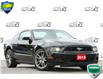 2013 Ford Mustang GT (Stk: 20M4930A) in Kitchener - Image 1 of 17