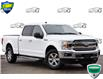 2019 Ford F-150 XLT (Stk: 155830) in Kitchener - Image 1 of 25