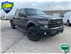 2014 Ford F-150 FX4 (Stk: 155580A) in Kitchener - Image 1 of 6