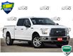 2015 Ford F-150 XLT (Stk: D100610A) in Kitchener - Image 1 of 22