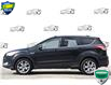 2014 Ford Escape Titanium (Stk: D100780A) in Kitchener - Image 3 of 21