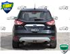 2014 Ford Escape Titanium (Stk: D100780A) in Kitchener - Image 4 of 21
