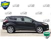 2014 Ford Escape Titanium (Stk: D100780A) in Kitchener - Image 2 of 21