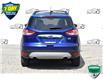 2015 Ford Escape SE (Stk: 156900A) in Kitchener - Image 4 of 20