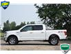 2017 Ford F-150 XLT (Stk: 157780A) in Kitchener - Image 3 of 25