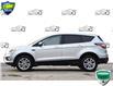 2017 Ford Escape SE (Stk: 158310) in Kitchener - Image 3 of 23