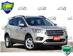 2017 Ford Escape SE (Stk: D107500AX) in Kitchener - Image 1 of 18