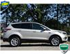 2017 Ford Escape SE (Stk: D107500AX) in Kitchener - Image 2 of 18