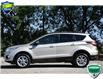 2017 Ford Escape SE (Stk: D107500AX) in Kitchener - Image 3 of 18