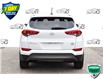 2016 Hyundai Tucson Premium 1.6 (Stk: 60816A) in Kitchener - Image 4 of 20