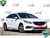 2016 Hyundai Sonata Sport Tech (Stk: P61142A) in Kitchener - Image 1 of 21