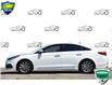 2016 Hyundai Sonata Sport Tech (Stk: P61142A) in Kitchener - Image 3 of 21