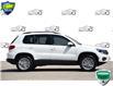 2016 Volkswagen Tiguan Comfortline (Stk: 59735AX) in Kitchener - Image 2 of 19
