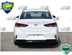 2018 Hyundai Sonata GL (Stk: 61171A) in Kitchener - Image 4 of 20
