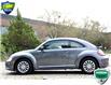 2017 Volkswagen Beetle 1.8 TSI Trendline (Stk: OP4188) in Kitchener - Image 3 of 18