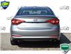 2016 Hyundai Sonata GL (Stk: OP4191XX) in Kitchener - Image 4 of 19