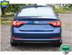 2016 Hyundai Sonata GLS (Stk: P61372AX) in Kitchener - Image 4 of 20