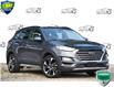 2019 Hyundai Tucson Ultimate (Stk: 61345A) in Kitchener - Image 1 of 22