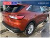 2020 Ford Escape SE (Stk: 4256) in Vanderhoof - Image 2 of 19
